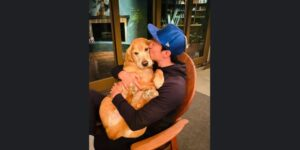 Rescued Dog Now Lives Her Best Life With Her Famous Dad Daniel Henney